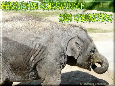 Geburtstag Grusskarte Tiere Jpg 01